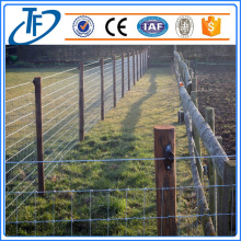 200g / m2 Hot Dipped Galvanized Farm Fence, Cattle Fence