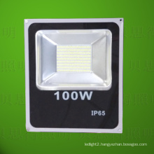 Focus Light 100W LED