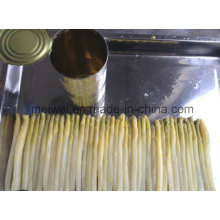 800g Canned White Asparagus with Best Quality