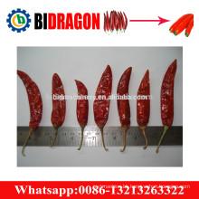 Pepper stalk removing machine manufacturer