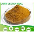 Alimento de maíz de alta calidad Comida de gluten de maíz