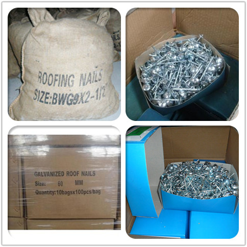 roofing nail package