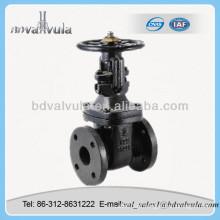 Válvulas de porta de ferro fundido Tipo de flange Válvula de retenção pn16