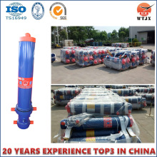 Tipping Truck Hydraulic Cylinder with TS16949 on Sale Cylinder