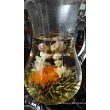 Цветущий жасминовый чай из цветков розы