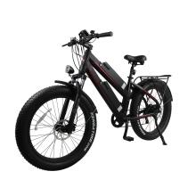 color customized ebike 11.6Ah dual lithium battery aluminum alloy frame fat bike