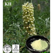 Sophorine, Cytisine 99%, Extracto de Sophora Alopecuroides