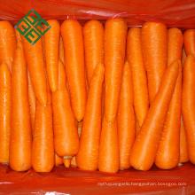 80-150G fresh carrot