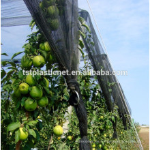 apple orchard hail net system