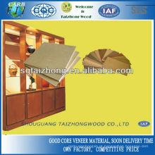 Mobiliário e Decoração Placa de Contraplacado 16mm