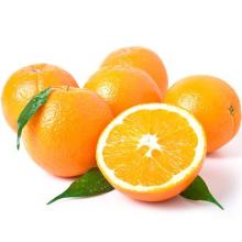 Natural High Quality Sweet Fresh Citrus Mandarin Navel Orange
