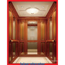 Small Machine Room Passenger Lift with Auto Rescue Device Function