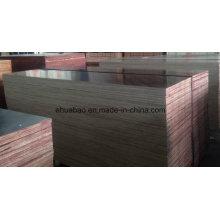 12mm Playwood Brown Film WBP Glue Poplar Core Primer Grado