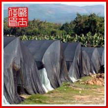 black sunshade net made in china