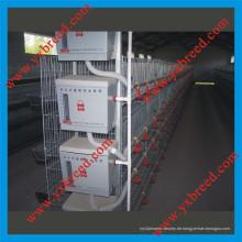 Heiß Galvanisierter automatischer A-Typ Broiler Hühnerkäfig (H4L80)