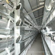 Клетки для птицеводства с автоматической системой подачи