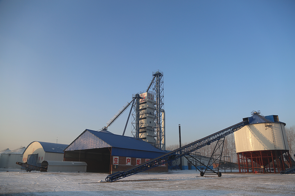 Grain Processing Dryer