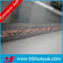 Ceinture de convoyeur en nylon standard DIN