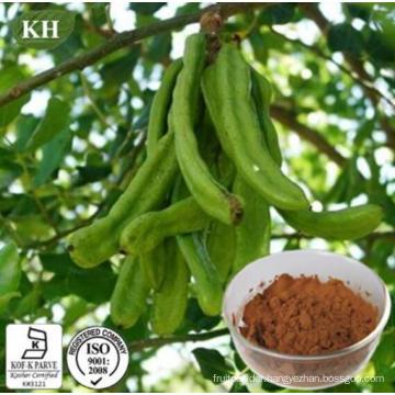 Carob Tree Fruit Pods Extract