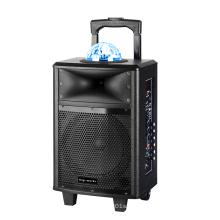 8 Inch DJ Audio Portable Karaoke Speakers with Bluetooth, Light, Mic