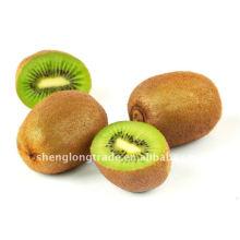 2011 best quality chinese fresh kiwi fruit