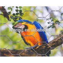 anping hexagonal maille oiseau cage exportation