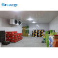 Cold storage of fruits and vegetables