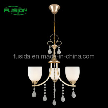 European Iron Penant Lighting, Lamp with Glass (D-8146/3)