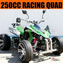 250CC ATV Quad Bike 250 (Racing )
