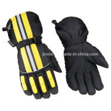 Ski Waterproof Windproof Winter Warm Outdoor Insulated Gloves