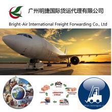 Надежный & профессиональные воздуха грузовые морские перевозки экспедитор из Китая материк в мире