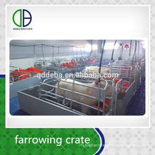 Factory Supply Galvanized Pipe Pig Sow FarrowingHouse For Pig