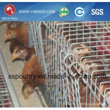 Geflügel-Ausrüstungs-Hühnerkäfig