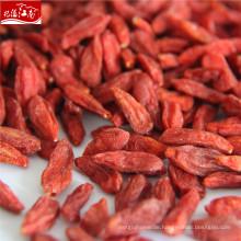 Ningxia Großhandel rote Bio-Goji-Beere