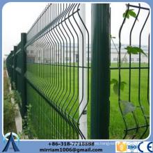 Buena calidad 656mm panel de alambre doble (experiencia de exportación de 8 años)