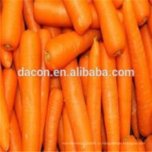 Органическая сушеная морковь