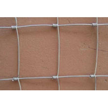 Hot Sales Hot Dipped Galvanized Deer Fence/Hange Joint Fence