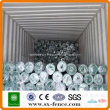 Treillis métallique enduit de PVC de Hollande (usine)