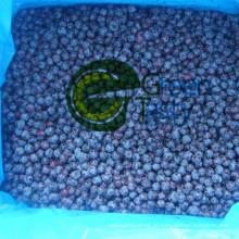 Nova safra IQF Frozen Wild Blueberry