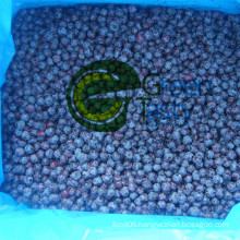 New Crop IQF Frozen Wild Blueberry