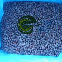 Новая культура IQF Frozen Wild Blueberry