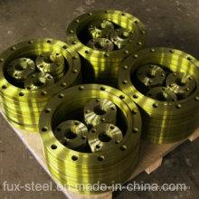 Fabricante líder de bridas de acero con TUV