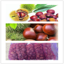 2015 Chinese Organic Fresh Chestnuts