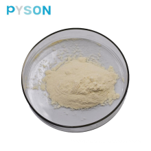 Ginger Root Extract Gingerols 3% HPLC