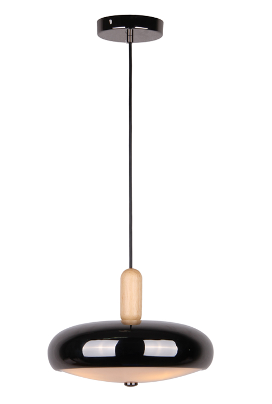 Black Glass Iron Pendant Lamp