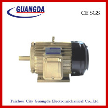 CE SGS 4kw Triple-Phase Air Compressor Motor
