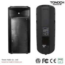 Heißer Verkaufs-Doppel 15 Zoll Bi-AMP aktiver Lautsprecher