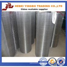 China Großhandelsberufs-Fertigung galvanisierte geschweißten Maschendraht / PVC beschichtet / Edelstahl geschweißter Maschendraht