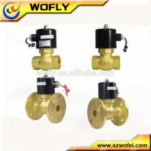 0-180degree latão 220VAC aquecedor de água válvula solenóide