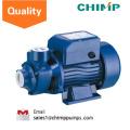 China 0.5HP kleines elektrisches Haus säubert Vortex-Wasserpumpe 220V / 120V